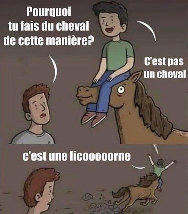 Pourquoi tu fais du cheval ?