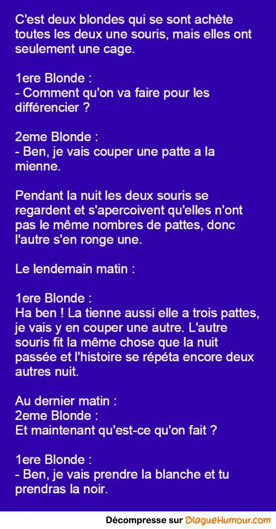 Deux blondes et deux souris