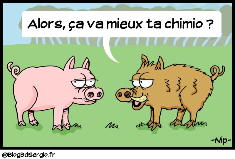 Le sanglier et le cochon
